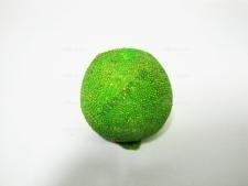 Яблоко зеленое с жемчугом 7 х 8 см .