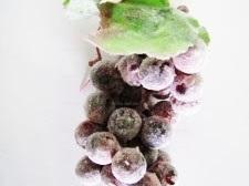 Виноград разноцветный с инеем 45 шариков
